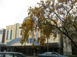 In the center of town, the movie theater and a Kowhai tree